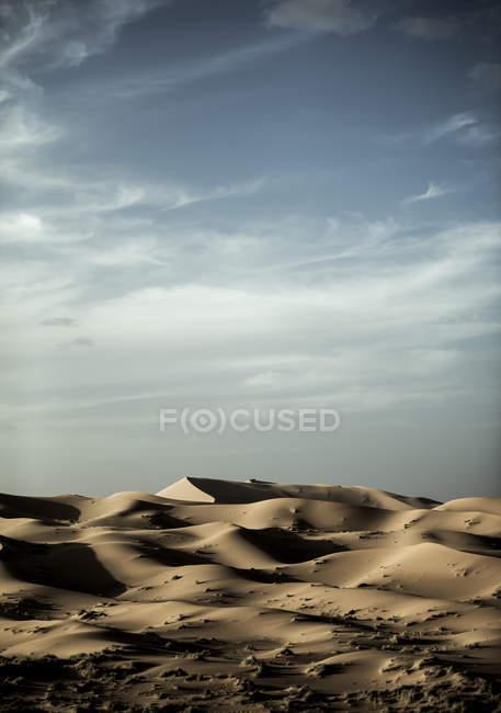 Desert landscape with sand dunes — Stock Photo