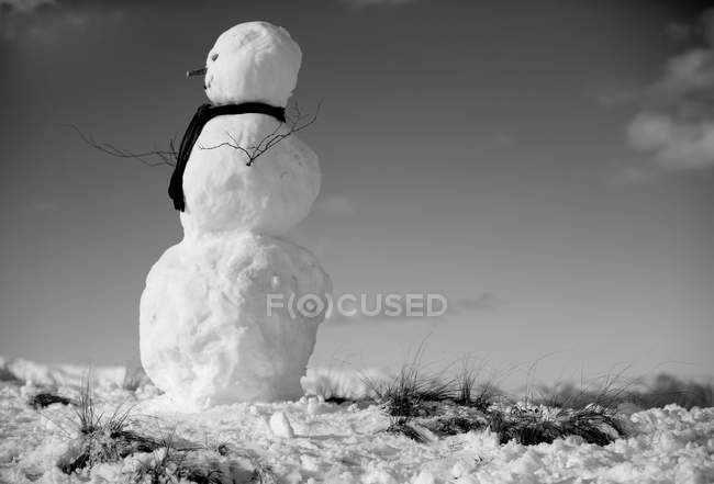 Schneemann mit Schal — Stockfoto