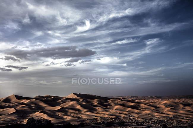 Paysage désertique avec dunes de sable — Photo de stock