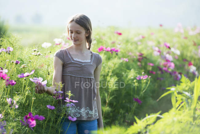 Teenage girl touching flowers in field — Stock Photo