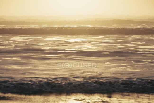 Ondas quebrando na costa ao entardecer no parque nacional olímpico, Washington, EUA — Fotografia de Stock