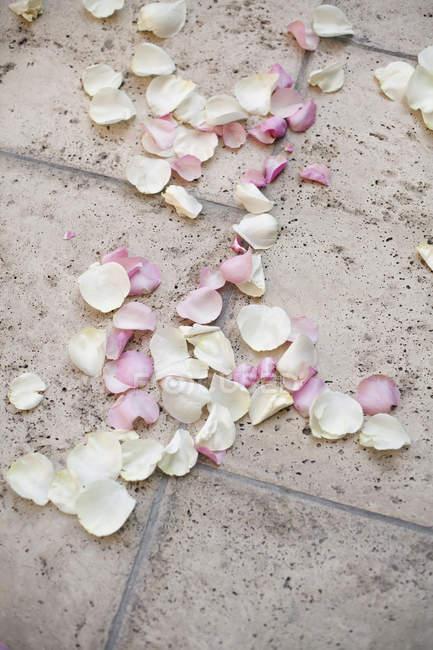 Естественный розовый сушеные лепестки роз на земле. — стоковое фото