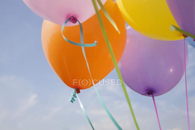 Букет з різнокольорових кульок, що плавають у повітрі проти синього неба. — стокове фото