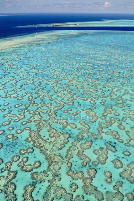 Les récifs de corail naturel modèle à la grande barrière de corail, Australie — Photo de stock
