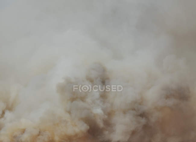 Natural clouds of smoke of forest fire, full frame — Stock Photo