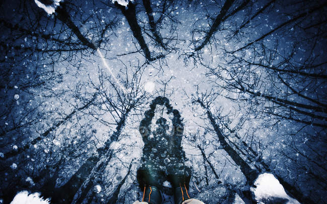 Shadow on surface of ice of man and trees. — Stock Photo