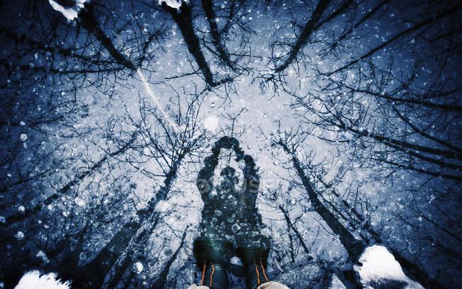 Na superfície de gelo de homem e árvores de sombra — Fotografia de Stock
