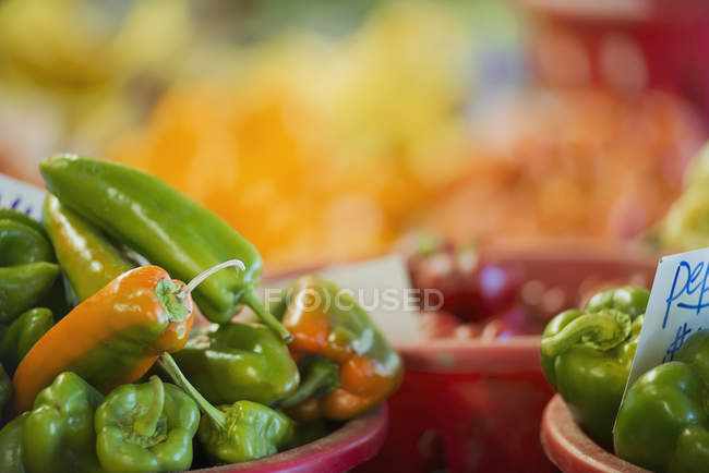 Organic assorted green peppers in pots on table. — Stock Photo