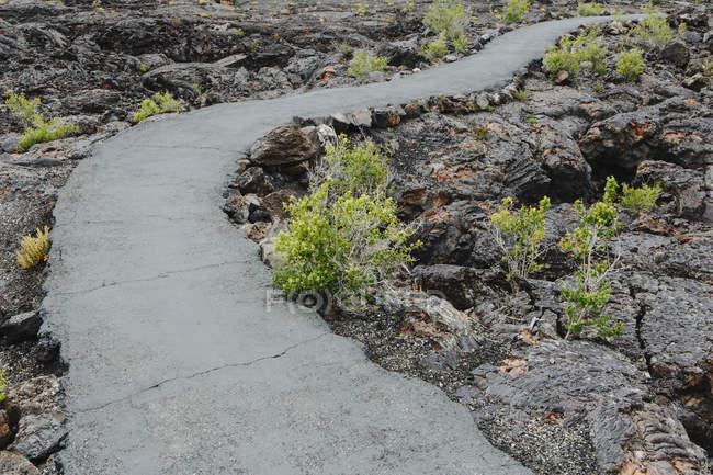 Проложенный путь через лавовое поле кратеров национального памятника