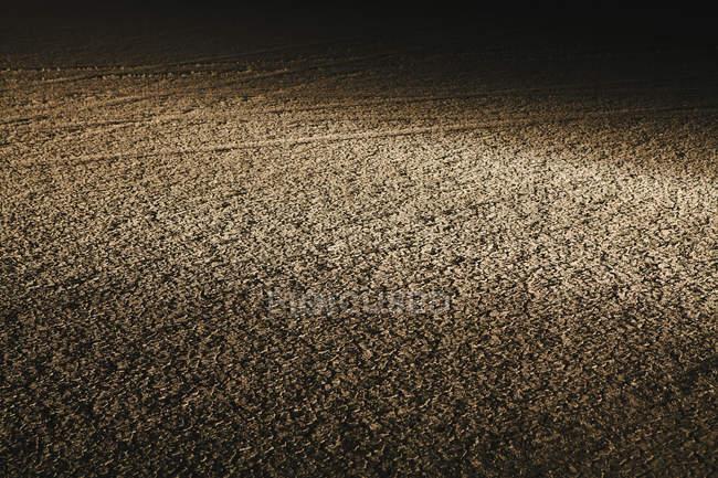 Vista notturna della superficie desertica incrinata a secco nel deserto di Black Rock in Nevada, USA — Foto stock