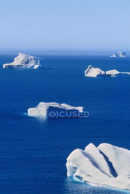 Icebergs flotando en mares azules tranquilos frente a la costa de la isla de Georgia del Sur, Islas Malvinas - foto de stock
