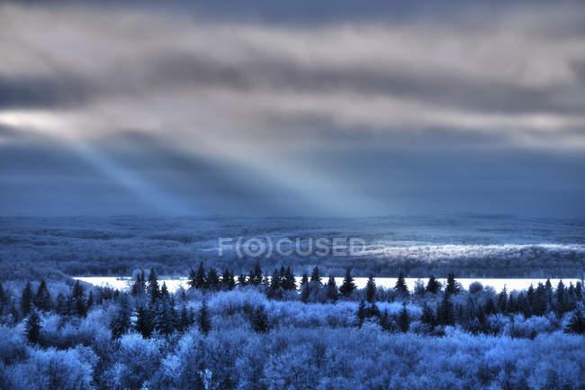 Landschaft von Kiefernwald und Schneefeld mit Sonnenstrahlen reflektieren Oberfläche des Sees. — Stockfoto