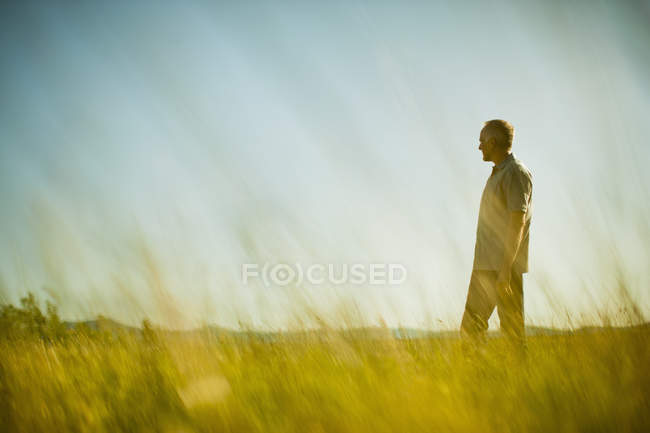 Mature man standing in grassland and looking at view in field. — Stock Photo