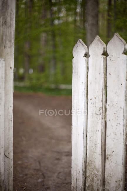 Cerca blanca del piquete con la puerta abierta del jardín . - foto de stock