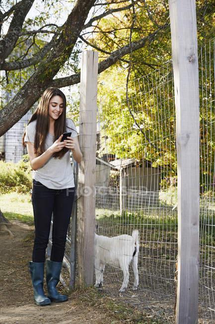 Молодая женщина с помощью смартфона рядом с козьим пером . — стоковое фото