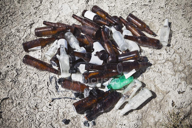 Discarded beer bottles in desert, close-up. — Stock Photo