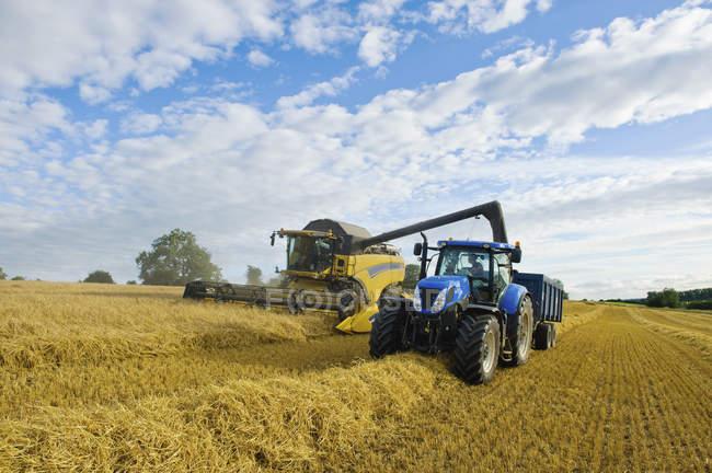 Mietitrebbiatrice lavorando a fianco di trattore sulle colture in campo. — Foto stock