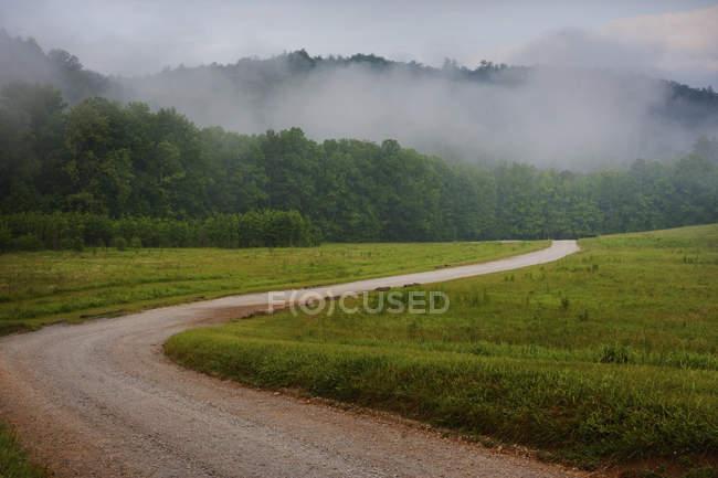 Sinuosa estrada de terra rural através da floresta coberta de névoa no Tennessee, EUA. — Fotografia de Stock