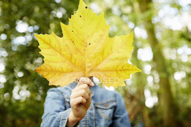 Girl holding autumnal yellow leaf in front of face. — Stock Photo
