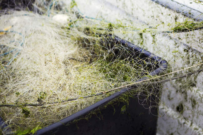 Fishing nets in black plastic crate. — Stock Photo