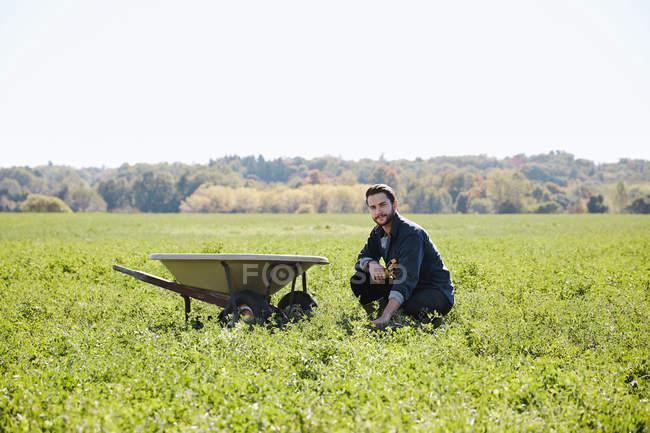 Junger Mann kniend im Ernte Feld neben Schubkarre — Stockfoto