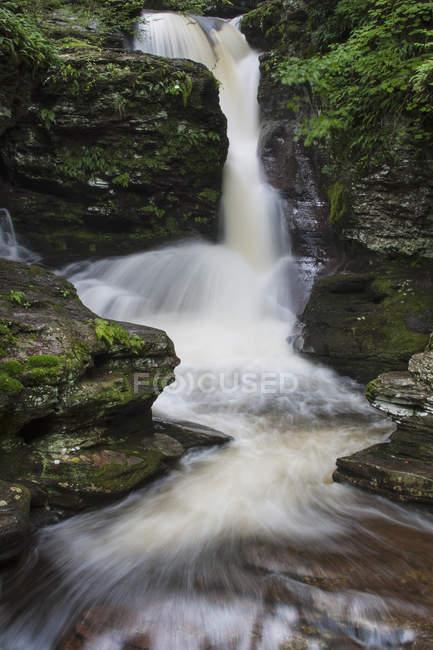 Flowing water of Adams Falls waterfall in Ricketts Glen State Park, Pennsylvania. — Stock Photo