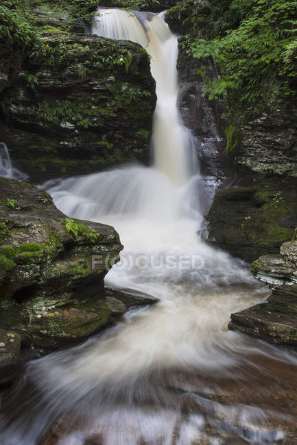 Проточная вода Адамс водопад Рикеттс Глен State Park, штат Пенсильвания — стоковое фото