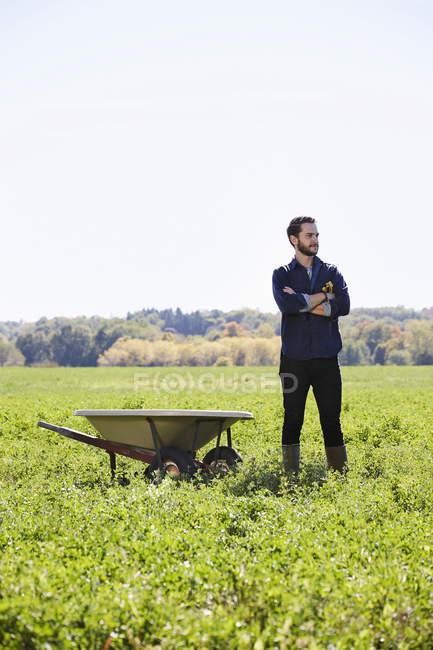 Молодой человек с руками скрещенными стоя в поле урожай рядом с тачкой. — стоковое фото