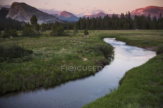 Rio que atravessa a pastagem no vale da Califórnia, EUA. — Fotografia de Stock