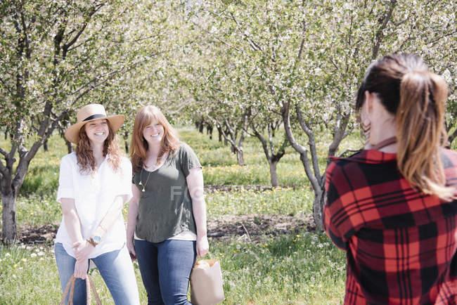 Vue arrière d'une photographe qui prend des photos de femmes dans un verger en été . — Photo de stock