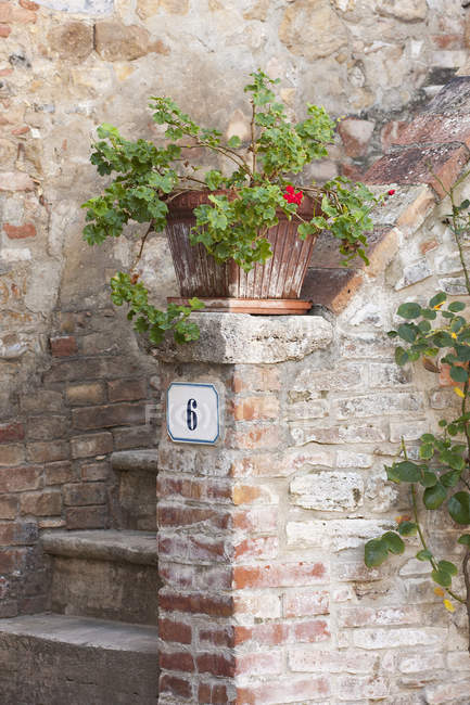 Rustic entryway into traditional Tuscan house with flowerpot on stoop in Italy. — Stock Photo