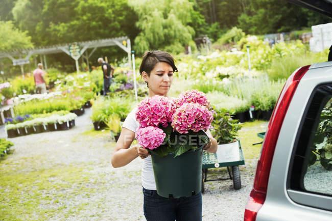 Жінка завантаження квіти в транк автомобіль припаркований на Садовий центр. — стокове фото
