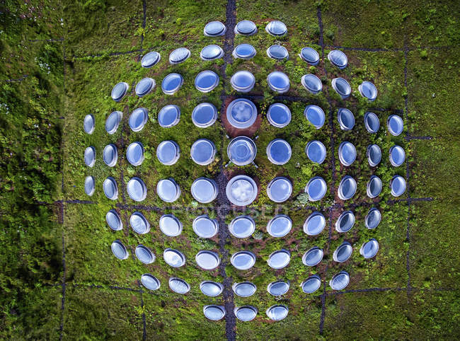 High angle view of round windows of grassy living roof. — Stock Photo