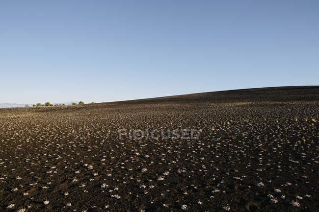 Краєвид кратерів місяця в Айдахо, США. — стокове фото