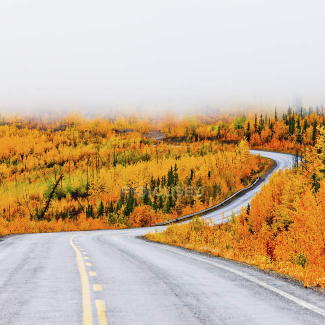 Highway winding through autumnal forest taiga countryside with low clouds in Yukon Territory, Canada. — Stock Photo