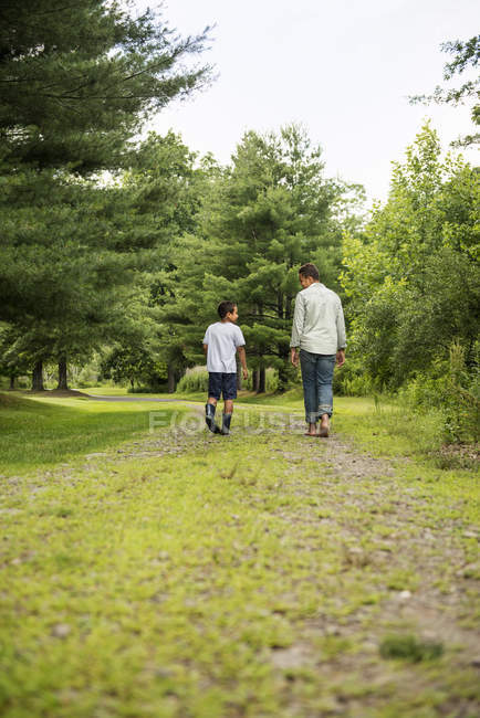 Two brothers walking on country path in woodland, rear view. — Stock Photo