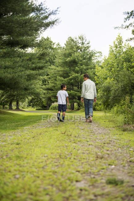 Dos hermanos caminando por sendero en el bosque, vista trasera - foto de stock
