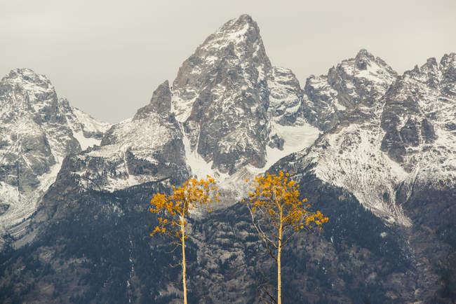 Snow covered mountain range in Grand Teton national park. — Stock Photo