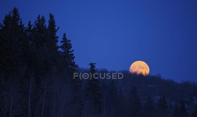 Мальовничий вид на повний місяць в темно синій нічне небо — стокове фото