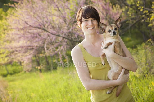 Молодая женщина в травянистом поле весной держит чихуахуа собака . — стоковое фото