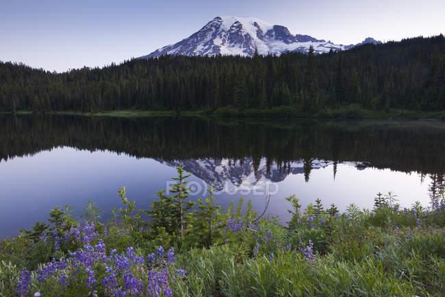Mount Rainier schneebedeckten Gipfel in Washington, Usa — Stockfoto