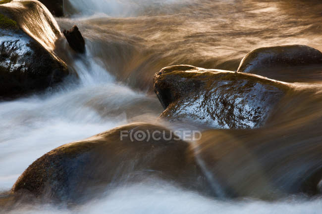 Water flowing over rocks in mountain creek. — Stock Photo