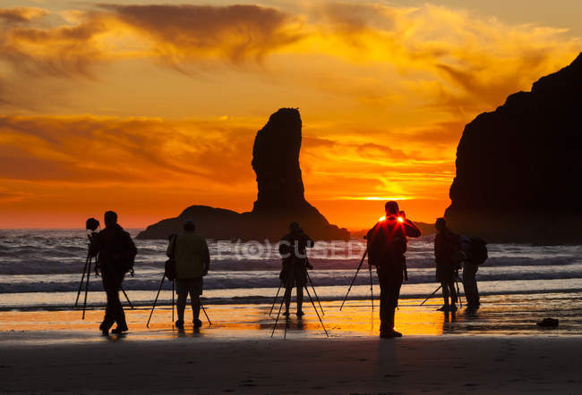 Silhouettes of photographers with equipment on beach at sunset in Olympic National Park, Washington, USA — Stock Photo