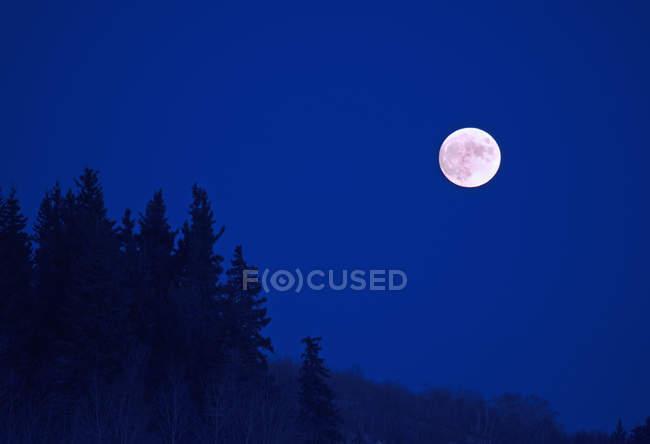 Vista panorámica de la luna llena en el cielo nocturno azul oscuro . - foto de stock
