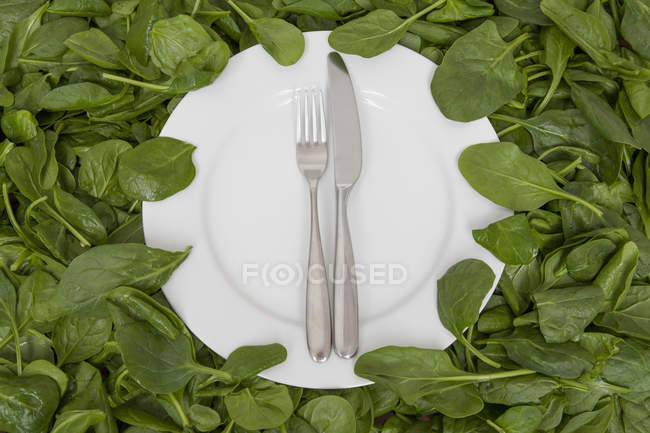 Weißer Teller mit Messer und Gabel auf essbaren Blättern. — Stockfoto