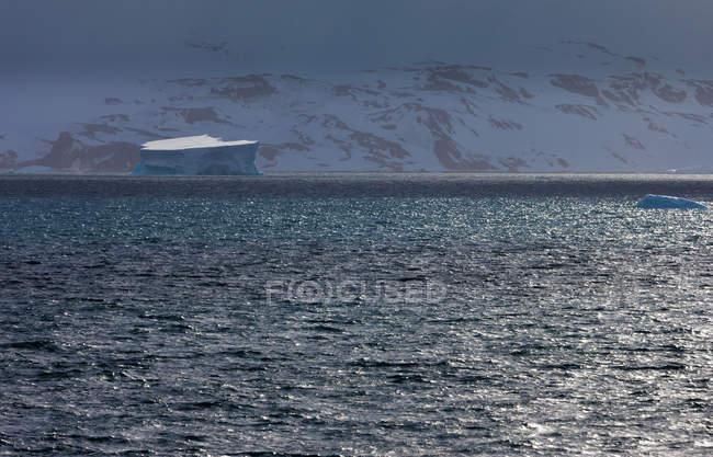 Iceberg na superfície de água do oceano na Antártida — Fotografia de Stock