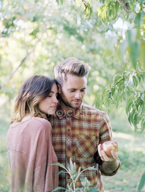Молодая пара стоит у яблони в саду и держит яблоко . — стоковое фото