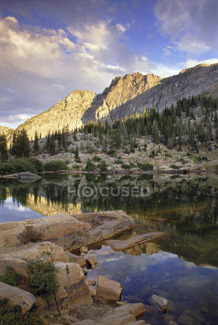 Scenic view of Albion Basin valley and Wasatch Mountains with landscape of national forest in Utah. — Stock Photo
