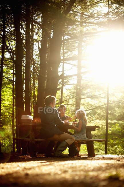 Família com filha sentada à mesa de piquenique debaixo de árvores em luz suave. — Fotografia de Stock