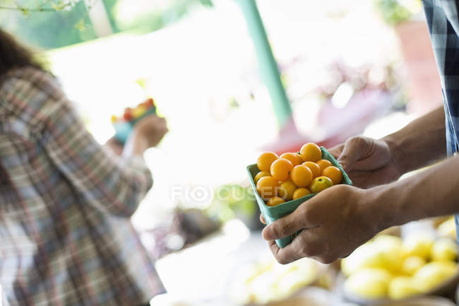 Man and woman with baskets of tomatoes and fresh vegetables. — Stock Photo